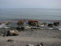 20 соток в Алуште с собственным пляжем.