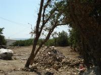 Продаётся 40 соток земли в аренде у самого моря в Алупке